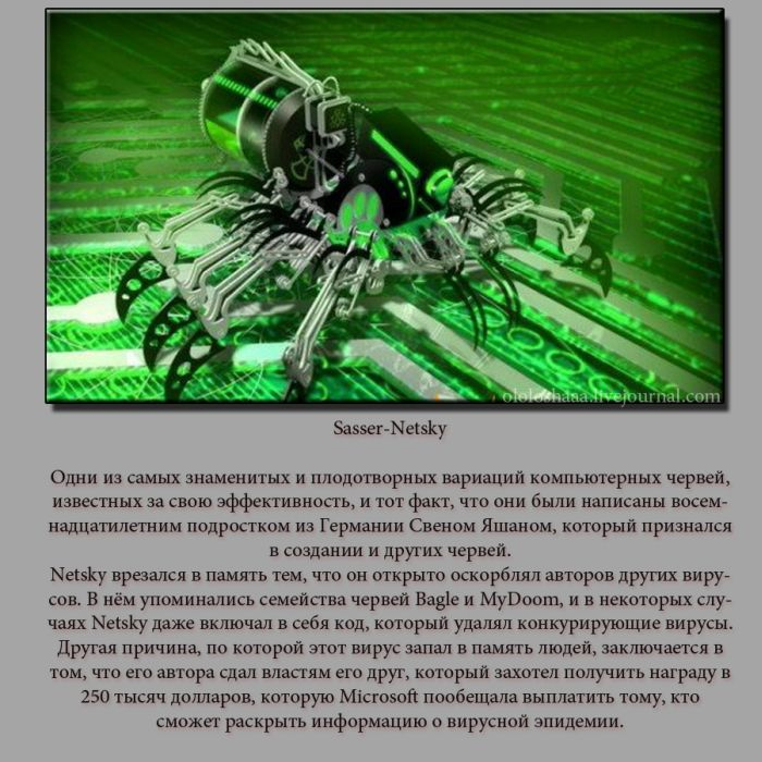 ТОП 5 самых ужасных компьютерных вирусов