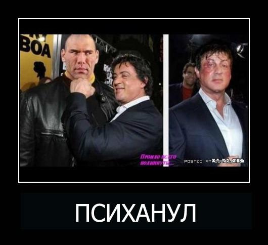 "Фотографии на тему ""Психанул!"" (50 фото)"