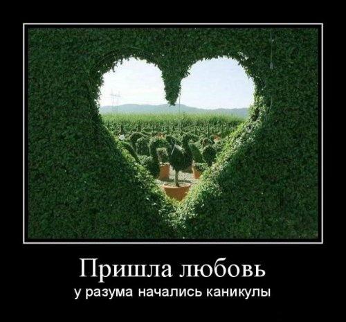 Демотиваторы про любовь и чувства (37 шт.)